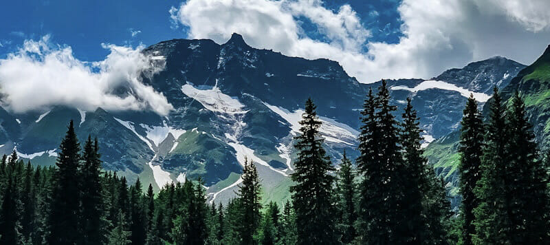 Leben auf Iperinea - Hochgebirge