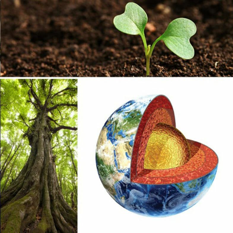 Naturkraft - natürliche Kraft - Das Element Erde - Erde - Elemente